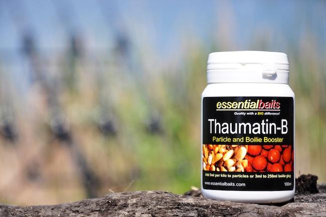 Thaumatin 1