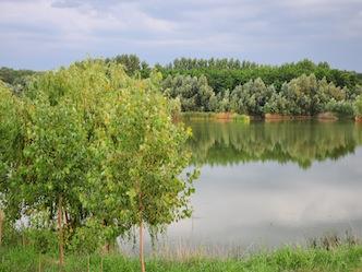 varlaam-88119-1.jpg